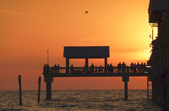 Good night, ye golden orb! (Barefoot In Florida) Tags: florida clearwaterbeach