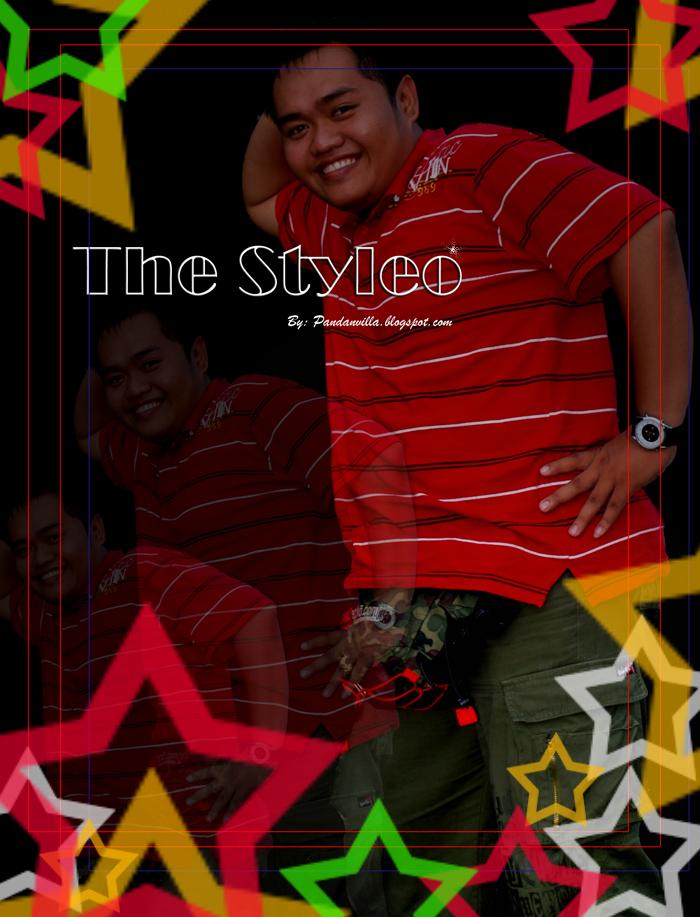 the stylelo