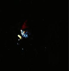 holg 3 7 (Spaghettimonster) Tags: film analog garden holga gnome amelie 120mm