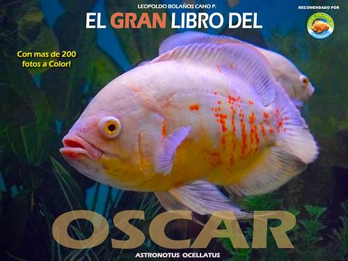 El gran libro del OSCAR 3470582108_6a839a5887