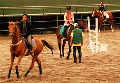 Rehearsal (<<Maverick>>) Tags: horse trooper sports sport lady nikon iran iranian tehran ایران horseriding roadster تهران زن اسب d80 nikond80 ایرانیان سوارکاری چیتگر یورتمه