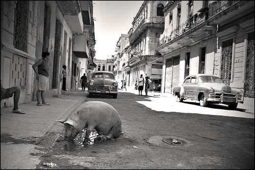 Havana. Street in Habana Viejo. por strangesky.