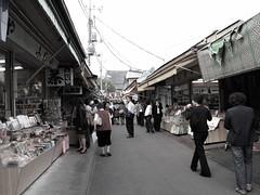 shopping a little (monkichichan) Tags: japan tokyo spring fuji mount mountfuji sakura gotemba ebina april2009