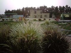 صورة0031 (lateefkuwait) Tags: في تاريخ المزرعة 452009