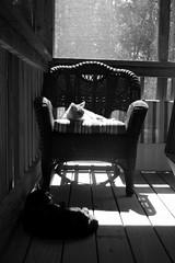 In my own little corner, in my own little chair...
