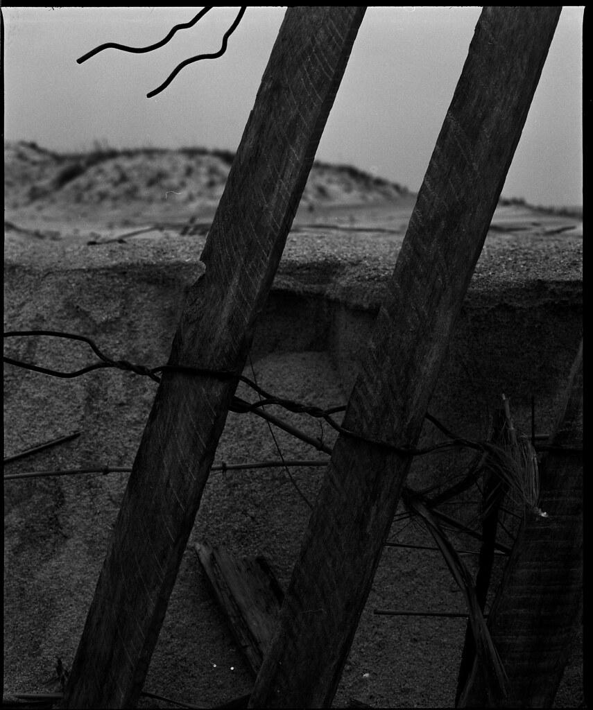 Fence Study C.