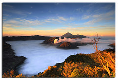 Few minutes later - Bromo (Nora Carol) Tags: sky clouds sunrise indonesia for this is photo you good like it thank jakarta crater yours sharing volcanoes really surabaya bromo semeru tengger malaysianphotographer bromotenggersemerunationalpark mtsemeru mtbatok noracarol sonya200 bromosunrise sonyalphadslra200 sabahanphotographer frontpagep landscapephotographerfromsabah womanlandscapephotographer womaninphotography