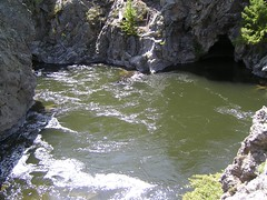 Firehole River Swimming