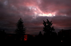 MORNING HAS BROKEN LIKE THE FIRST MORNING (mjose_almeida) Tags: pink trees houses friends light sunset sky music beautiful clouds sunrise buildings interestingness nikon memories silhouettes explore teenager thismorning catstevens terrific goodolddays dramatci