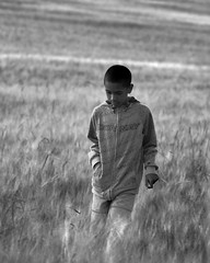 Weetabix (djemde) Tags: boy portrait white black field youth wonder wheat norfolk grain young crop innocence wander weetabix