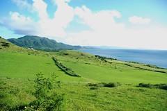 Landscape from Cape Hirakubosaki (Di6381) Tags: grass nikond70 land okinawa  ishigaki