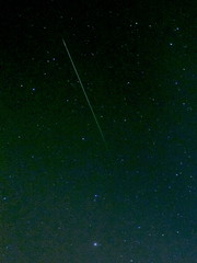 Perseid Meteor Aug 2009