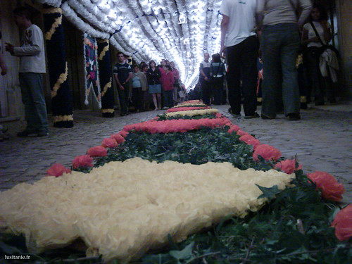 Ambiance chaleureuse pendant la Festa dos Tabuleiros