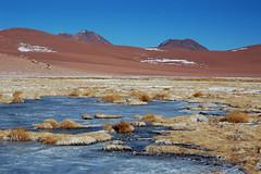 Contrastes (Amaya H) Tags: chile nikon atacama laguna hansen hielo altiplano volcan algodon amayah