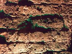 Goblin Faces Looming (Diamond Geyser) Tags: london brickwork greentint shuntvaults