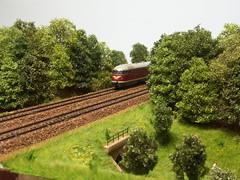 PICT2191 (dampflok44) Tags: modelleisenbahn modelrailroad modellbahn modelllandschaft