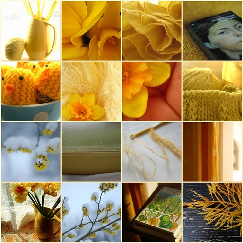 A selection of yellows from my photos