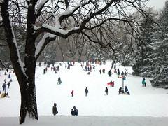 Snow Day (lily_bart) Tags: nyc newyorkcity winter snow children centralpark manhattan sledding gothamist sled cedarhill
