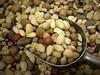 Nuts Nuts Nuts (Jenn (ovaunda)) Tags: utah sony cedarcity dsch5 pfogold pfosilver jennovaunda ovaunda