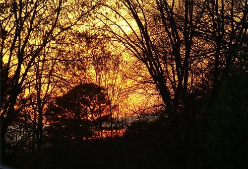 Sunset-3-11-09
