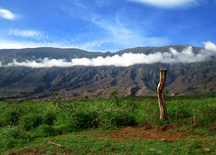 A Scene From A Dream (RnzWithScizzerz) Tags: sky clouds landscape hawaii maui haleakala crater backside fencepost dreamvacation rnzwithscizzerz