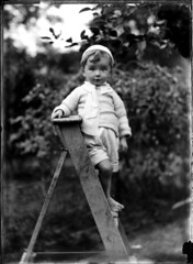 Portrait of small barefoot boy on a wooden ladder (Powerhouse Museum Collection) Tags: boy portrait high child thoughts barefoot ladder curious favorita powerhousemuseum fruitpicking descalzo scalzo descalo piedsnus piedinudi xmlns:dc=httppurlorgdcelements11 dc:identifier=httpwwwpowerhousemuseumcomcollectiondatabaseirn386894 baretootsies descalcinho commons:event=commonground2009 boylittleblackorchardwhite
