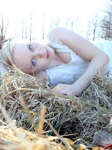 Lie in the grass 01