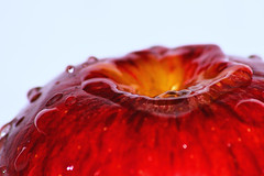 Apple water splash. Nikon D60 (Rick Wilks) Tags: macro wet drops nikon sigma 300mm droplet splash d60