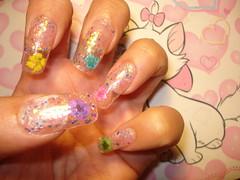 ★Real Flower Nails ~2~★ (Pinky Anela) Tags: flower cute japanese colorful nail kawaii deco nailart deko japanesenail
