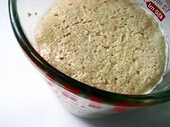 yeast2