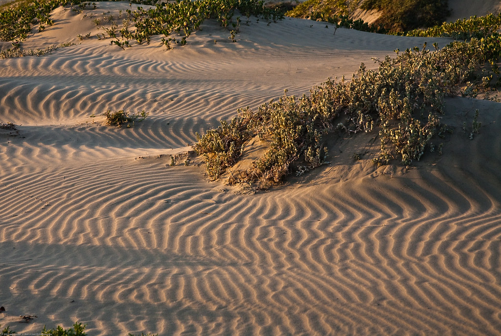 Shadow patterns on drifting sand dunes before sunset on Morro Strand State Beach, Morro Bay, CA. Also characteristic of Montana de Oro area to the south.