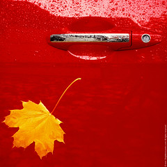 Autumn Etude (Oleg Moiseyenko) Tags: nov door autumn red stilllife fall wet water car rain weather yellow metal honda handle leaf automobile lock no stock objects drop chrome stick keyhole acura tsx