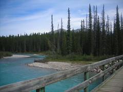 bow river (Harold Cecchetti) Tags: banff bowriver