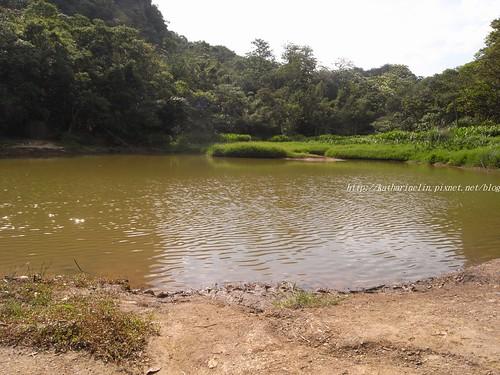 你拍攝的 14翠湖。