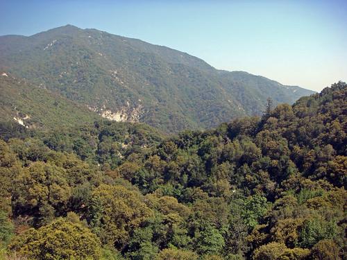 Big Santa Anita Canyon Trail Via Chantry Flat California