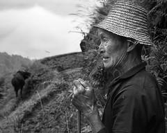 Home i bou (Sergi Bernal) Tags: china ma labrador pin manos ann homo hombre yao xina tiempo detall longseng labrar llaurador llaurar