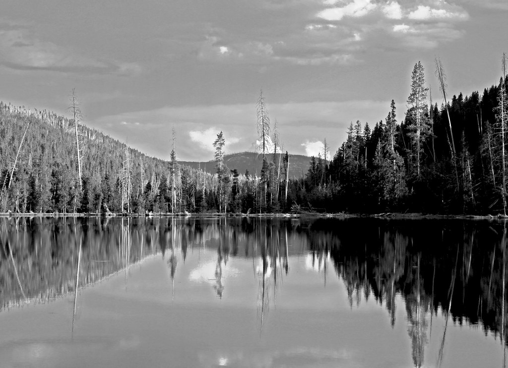 Reflection Lake BW