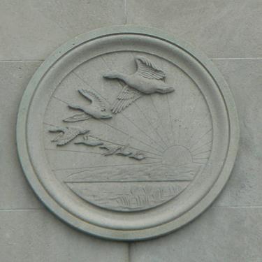 Geese, Toronto