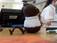 Code Monkey at work