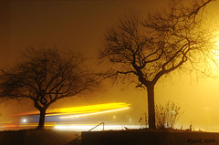 Foggy Night and a City Bus (jssutt) Tags: fog submitted night utah traffic getty gettyimages bountiful daviscounty foggynight jssutt jeffsuttlemyre