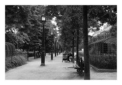 tramps n trees (a_dover86) Tags: park paris tramps