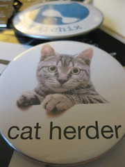 067/365: Cat herder