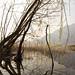 Scorcio del lago di Lecco