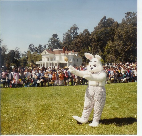 Dunsmuir Easter Bunny on the meadow