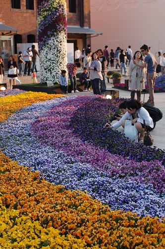 Flower festival in Yokohama