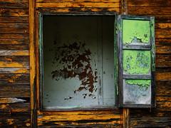 imposta sola (miglio) Tags: wood italy house case toscana legno chianciano disabitate