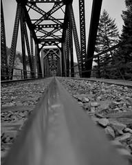 Rail Reflection (SkyeAnna) Tags: railroad trees oregon train rocks track tie willamette lanecounty highway58