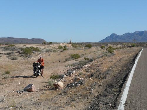 De vuelta de acampar entre los cactus