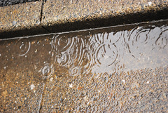 _3 (nakimusi) Tags: water rain japan tokyo alley downtown may nostalgia rainy   dripping  showa    childrensday        toshima    zoushigaya