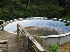 defunct pool